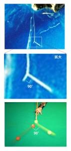 散乱説明写真3枚組